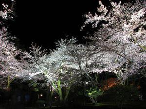 2010_04_12_02