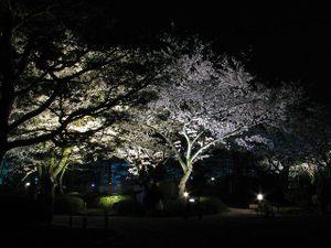 2010_04_12_03