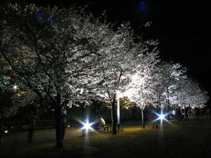 2010_04_13_08