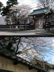 2010_04_17_03