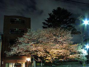 2010_04_18_07
