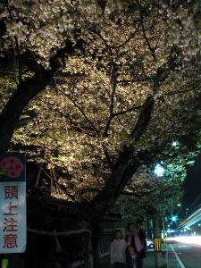 2010_04_18_08