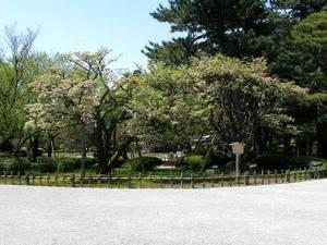 2010_05_02_02