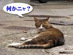 2010_09_09_09