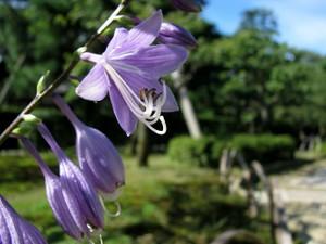 2010_09_26_05