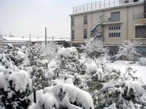 2011_01_31_01