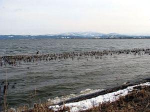 2011_02_20_08