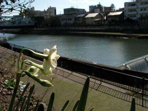 2011_03_30_07