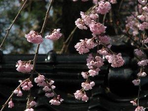 2011_04_16_04