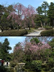 2011_04_19_12