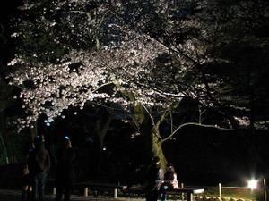 2011_04_21_05