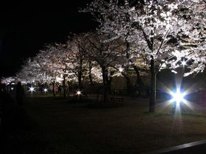 2011_04_22_08