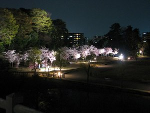 2011_04_22_10