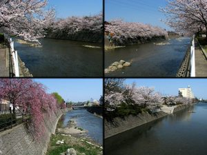 2011_04_23_05