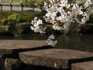 2011_04_29_06